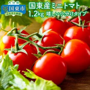 【ふるさと納税】国東産ミニトマト1.2kg※嬉しい小分けタイプ