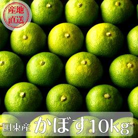 【ふるさと納税】大分県産かぼす10kg