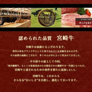 都城産宮崎牛100%【極】粗挽きハンバーグ8個