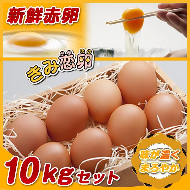 【ふるさと納税】新鮮赤卵「きみ恋卵」10kgセット - 健康な鶏から生まれた、取れたて新鮮たまごの180個セットです。玉子焼きなど、お料理にはもちろん、ケーキなどのお菓子作りにも最適です。 有限会社 河中農園【宮崎県都城市】