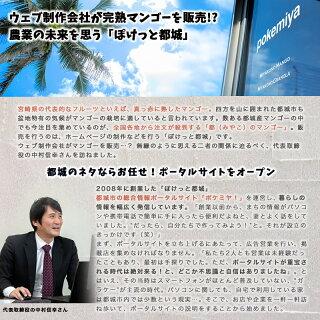宮崎完熟マンゴー2〜3玉(都城産)