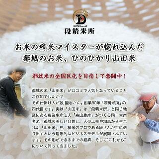 つきたて山田米(15.5kg)