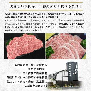 都城産宮崎牛定期便(10ヶ月)