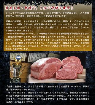 都城産宮崎牛赤身ももステーキ&サイコロステーキ