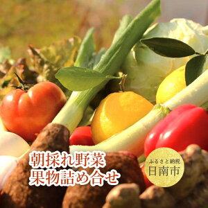 【ふるさと納税】 朝採れ野菜・果物詰め合わせ 旬の野菜や果物を10〜12品