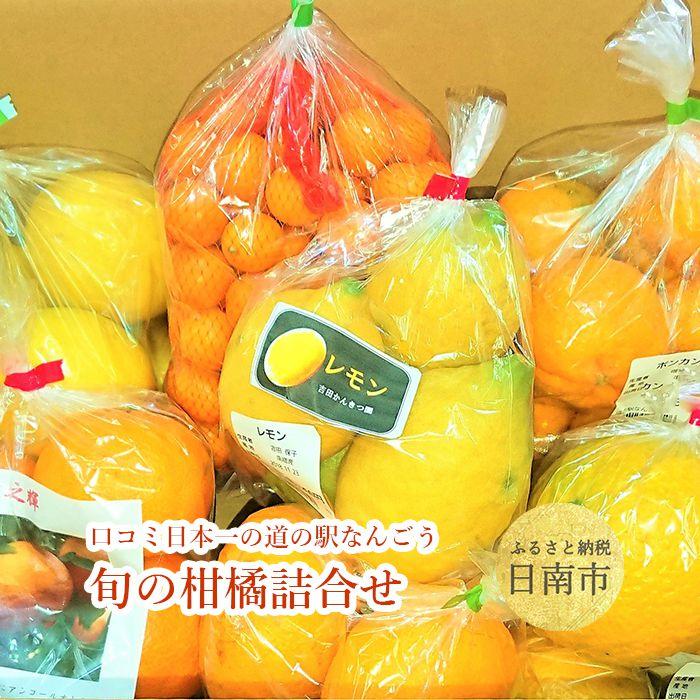 【ふるさと納税】 口コミ日本一の道の駅なんごう旬の柑橘詰め合わせ 旬の柑橘お楽しみセットを産地から直送します。