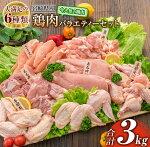 ≪大満足の6種類≫鶏肉バラエティーセット(合計3kg)宮崎県産