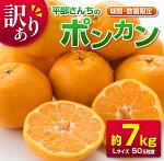 訳あり≪期間・数量限定≫平部さんちのポンカン(約7kg)フルーツ柑橘