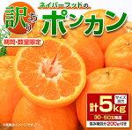 【ふるさと納税】≪期間・数量限定≫ネイバーフッドのポンカン(計5kg)フルーツ柑橘