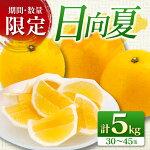 【ふるさと納税】≪期間・数量限定≫日向夏(計5kg)フルーツ柑橘