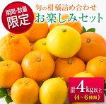 フルーツ≪期間・数量限定≫旬の柑橘詰め合わせお楽しみセット(計4kg以上)