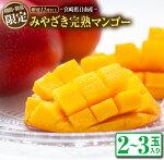 【ふるさと納税】みやざき完熟マンゴー(2〜3玉)