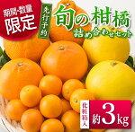 フルーツ≪先行予約≫旬の柑橘詰め合わせセット(約3kg)【化粧箱入】