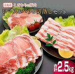 日南市こだわりの豚肉ロース&バラ肉切落し合計セット2.5kg