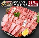 【ふるさと納税】《定期便》宮崎牛イチオシ焼肉セット(合計1.5kg)