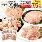 【ふるさと納税】宮崎県産若鶏セット7.5kg今だけ増量!鶏肉鳥肉もも肉2kgむね肉4kgささみ500g手羽元1kg送料無料※平成30年12月末日までに出荷予定