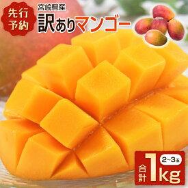 【ふるさと納税】<先行予約>宮崎県産 訳ありマンゴー 1kg