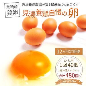【ふるさと納税】児湯養鶏自慢の卵480個(40個×12回)12ヶ月定期便冷蔵送料無料たまご国産