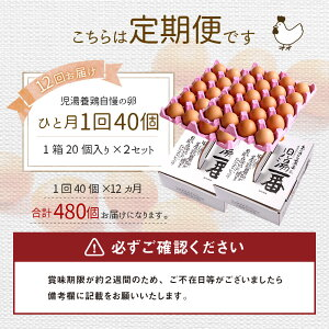 【ふるさと納税】児湯養鶏自慢の卵計480個(40個×12回)12ヶ月定期便冷蔵送料無料たまご国産