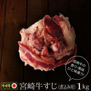 【ふるさと納税】宮崎牛 牛すじ(煮込み用) 1kg 500g×2パック 牛肉 小分け 冷凍 国産 宮崎県産 送料無料