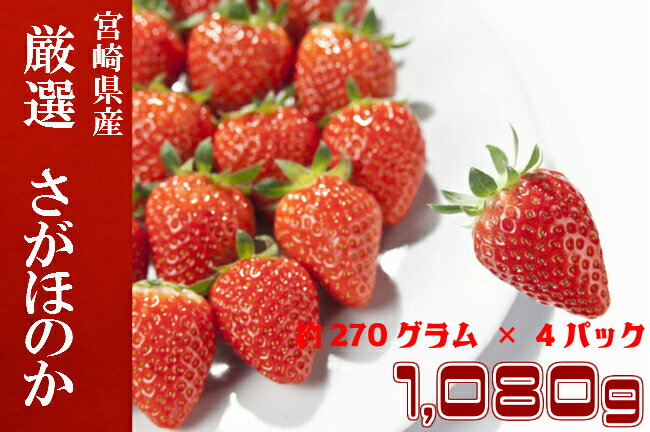 【ふるさと納税】宮崎県産いちご さがほのか 計1,080g (約270g×4パック 1箱入り) 約1kg 1キロ いちご イチゴ 苺 フルーツ 果物 送料無料
