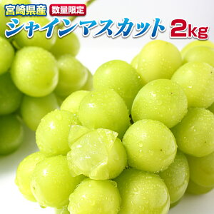 【ふるさと納税】<早期予約受付>宮崎県産シャインマスカット2kg(3〜6房) 種無し ぶどう 葡萄 フルーツ 数量限定 送料無料