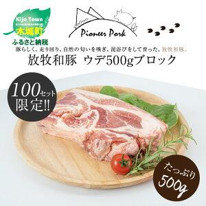 【ふるさと納税】放牧和豚 ウデブロック 500g 豚 ブロック肉 K26_0008 送料無料【宮崎県木城町】