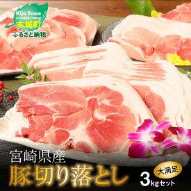 【ふるさと納税】<宮崎県産豚切落し3kg(500g×6パック)> K16_0004 送料無料 【宮崎県木城町】