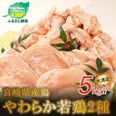 【ふるさと納税】<宮崎県産鶏やわらか若鶏2種5kg>K16_0016送料無料【宮崎県木城町】