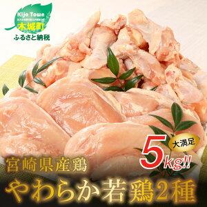 【ふるさと納税】<宮崎県産鶏 やわらか若鶏2種5kg> K16_0016 送料無料 【宮崎県木城町】