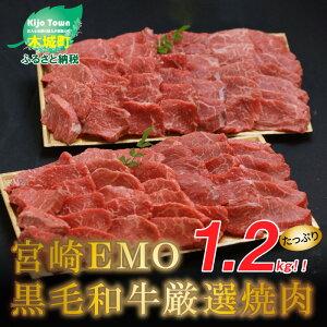【ふるさと納税】<宮崎EMO黒毛和牛厳選焼肉 1.2kg(600g×2)> K20_0012 送料無料【宮崎県木城町】