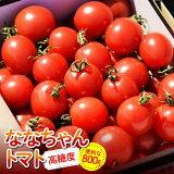 【ふるさと納税】甘みが高く、旨みと酸味のバランスが良い「川南町産ななちゃんトマト」