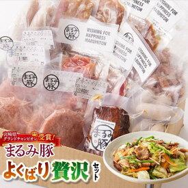 【ふるさと納税】※令和2年2月発送※県グランドチャンピオン獲得の豚肉『まるみ豚』よくばり贅沢セット