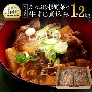 【ふるさと納税】宮崎県特有の甘めの味付けが特徴!いぶさな牛 牛すじ煮込み600g×2袋