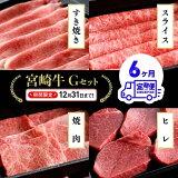 【ふるさと納税】肉牛肉ミヤチク宮崎牛定期便G