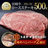 【ふるさと納税】ミヤチク宮崎牛ロースステーキ250g×2枚お楽しみの品付【数量・期間限定】G0653Pロース肉牛肉送料無料