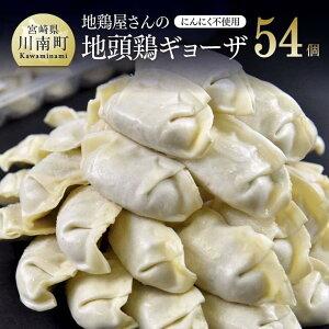 【ふるさと納税】地鶏の風味がギュッと詰まった『地頭鶏ギョーザセット』 合計54個! 地鶏 餃子 送料無料 H0806