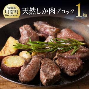 【ふるさと納税】薬肉!栄養面でも優れた天然シカの極上肉 人気の一品 送料無料