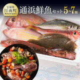 【ふるさと納税】鮮度抜群!漁協直送!人気の通浜鮮魚セット