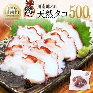 【ふるさと納税】小分けの冷凍でお届け!漁協直送で大人気の天然タコ(湯がき済)500g