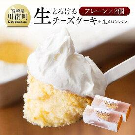 【ふるさと納税】『押川春月堂本店』とろける生チーズケーキ(プレーン2個)