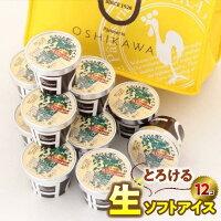 【ふるさと納税】『押川春月堂本店』とろける生ソフトアイスクリーム