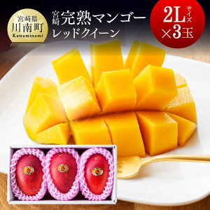 【ふるさと納税】完熟マンゴー『レッドクイーン』3玉×2L(合計1kg以上)