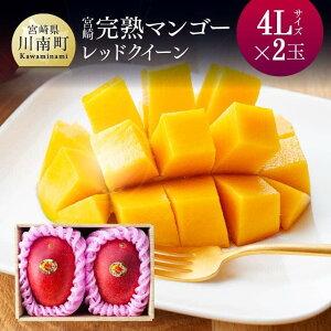 【ふるさと納税】完熟マンゴー『レッドクイーン』2玉×4L(合計1000g以上)