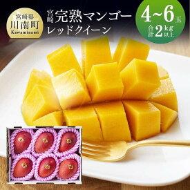 【ふるさと納税】完熟マンゴー『レッドクイーン』4〜6玉