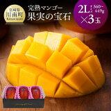 【ふるさと納税】果実の宝石マンゴー2L3玉