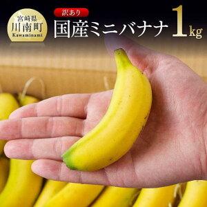 【ふるさと納税】【訳あり】国産ミニバナナ1kg ご自宅用や皮ごとスムージーにもオススメ!