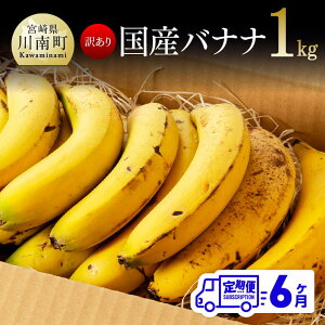 【ふるさと納税】【訳あり】国産バナナ1kg 6ヶ月定期便 ご自宅用や皮ごとスムージーにもオススメ! G5804 送料無料