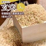 【ふるさと納税】農家直送!玄米(こしひかり)
