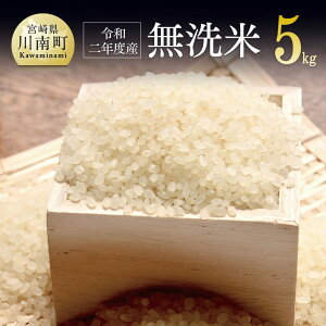 【ふるさと納税】※新米※『令和2年産』農家直送!無洗米こしひかり 5kg 8月後半より発送予定